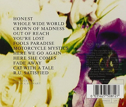 Bild 2: Dave Stewart & Spiritual Cowboys, Honest (1991)