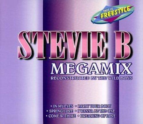 Bild 1: Stevie B., Megamix