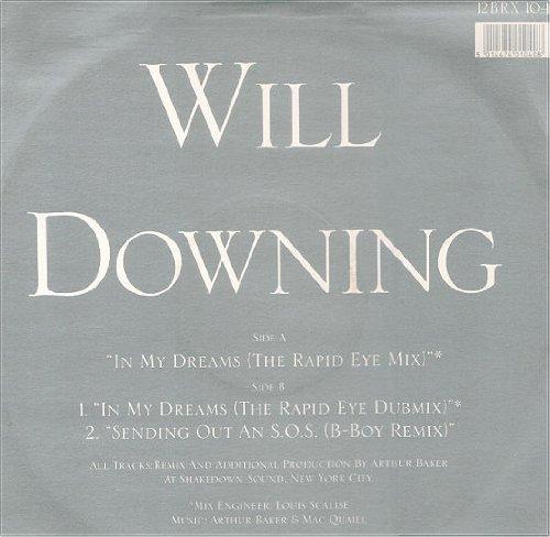 Bild 1: Will Downing, In my dreams