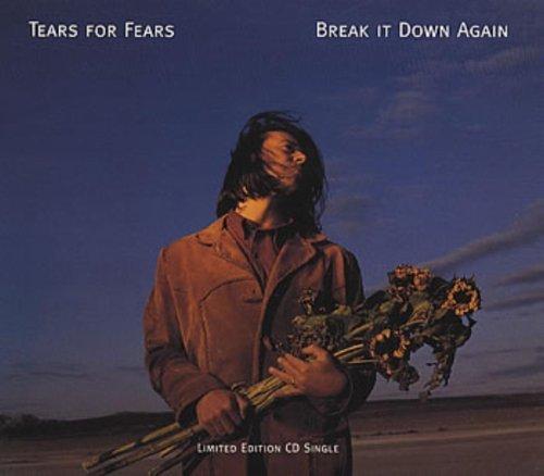 Фото 1: Tears for Fears, Break it down again (1993)