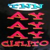TNN, Ayayay Cielito (#zyx/dst1266)