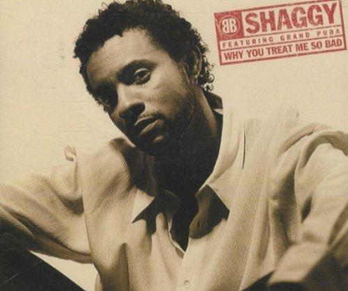 Bild 1: Shaggy, Why you treat me so bad (1996)