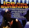 Ice in the Sunshine (BMG/AE), Beagle Music Ltd., Boney M., Bad Boys Blue, À La Carte, Ryan Paris..