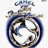 Camel, Snow goose (1975)