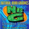 Natural Born Grooves, Groovebird system (1997)