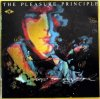 Pleasure Principle, Trip to my soul (1990)
