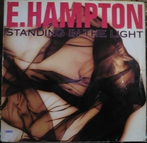Bild 1: E. Hampton, Standing in the light (1992)