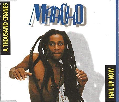 Bild 1: Maacho, A thousand cranes (1994)