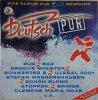 Deutsch Pur (1995), Pur, Bap, Groove Minister, Schwester S, Brings..