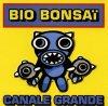 Bio Bonsaï, Canale grande