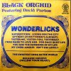Black Orchid, Wonderlicks (Special Long Version, 7:57min., 1981, feat. David Parton)