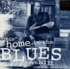 Comin' home to the Blues 3, John Lee Hooker, Mississippi Fred McDowell, Tommy Tucker, Muddy Waters..
