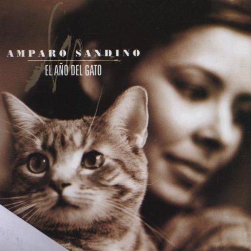 Bild 1: Amparo Sandino, El año del gato (1999)