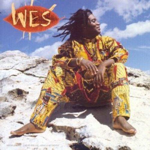 Bild 1: Wes, Welenga (1996)