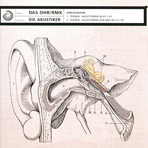 Bild 1: Akustiker, Das Ohr-Rmx (Haustermin)