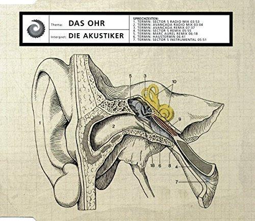 Фото 2: Akustiker, Das Ohr