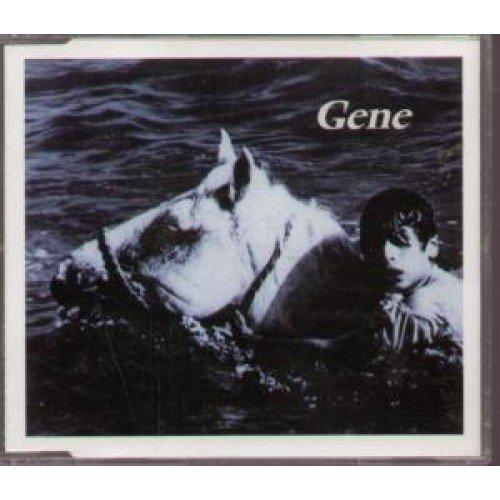 Bild 1: Gene, Haunted by you