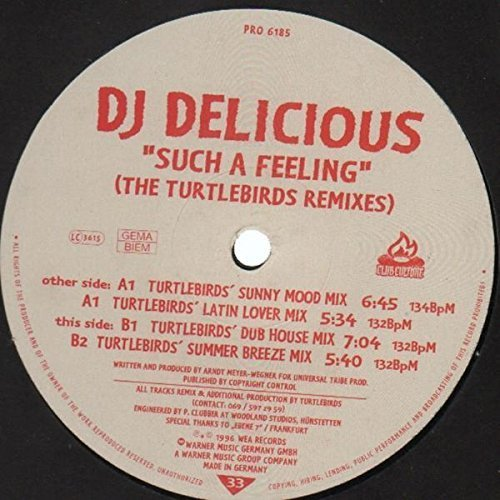 Bild 1: DJ Delicious, Such a feeling-The Turtlebirds Remixes (1996)