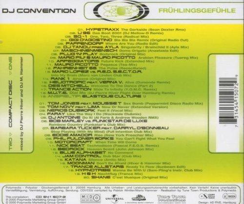 Bild 2: Hiver & Hammer, DJ convention 2000: Frühlingsgefühle (mix)