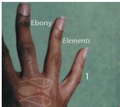 Bild 1: Ebony Elements 1, Chanté Moore, Veronica, Jodeci, Monifahl, Skoota..