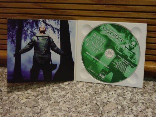 Bild 2: Xzibit, What u use is what u get (2 tracks, 1998)
