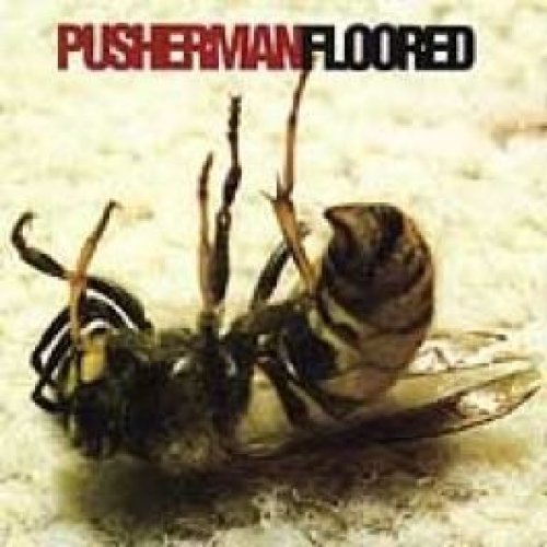 Bild 1: Pusherman, Floored (1996)