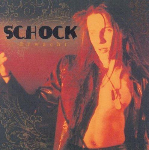 Bild 1: Schock, Erwacht (2001)