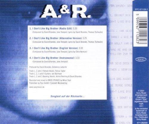 Bild 2: A. & R., I don't like Big Brother (2001)