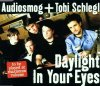 Audiosmog, Daylight in your eyes (2001, & Tobi Schlegl)