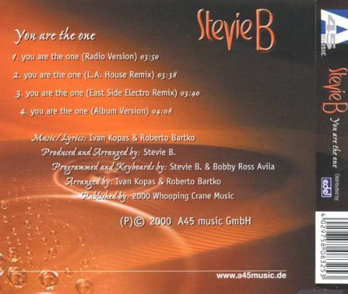 Bild 2: Stevie B., You are the one (2000)