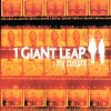 1 Giant Leap, My culture (2001)