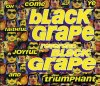 Black Grape, Reverend Black Grape (1995)