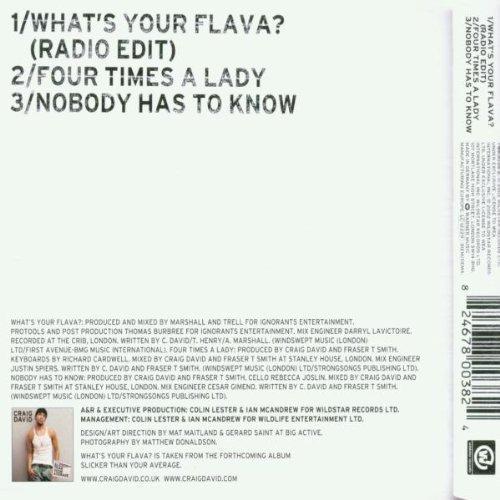 Bild 2: Craig David, What's your flava? (2002)