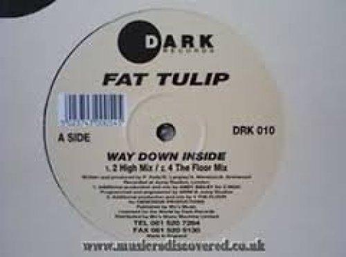 Bild 1: Fat Tulip, Way down inside (2 High Mix, UK)