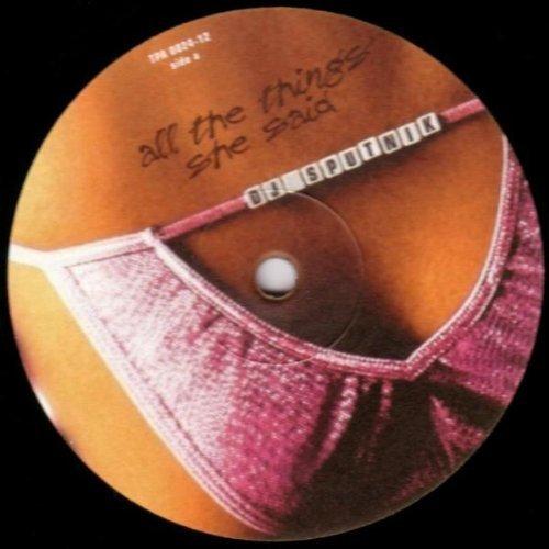 Bild 1: DJ Sputnik, All the things she said (#zyx/tpa0024)