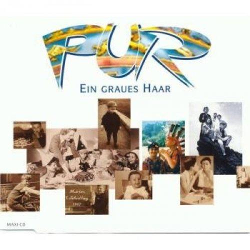 Bild 1: Pur, Ein graues Haar (1996)