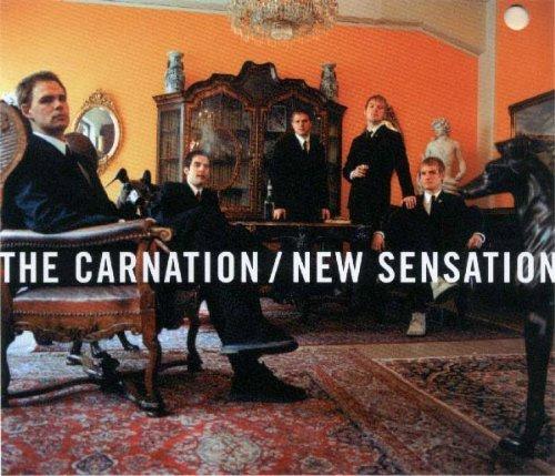 Bild 1: Carnation, New sensation (2003)