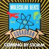 Molecular Beats Squadron, Coming by storm/Transmit power (2 versions each)