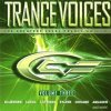 Trance Voices 03 (2002), DJ's @ Work, Lazard, Aquagen, 4 Strings, Noémi, Sylver, Ian van Dahl, iio, Chicane, Kim Wilde, Lasgo..
