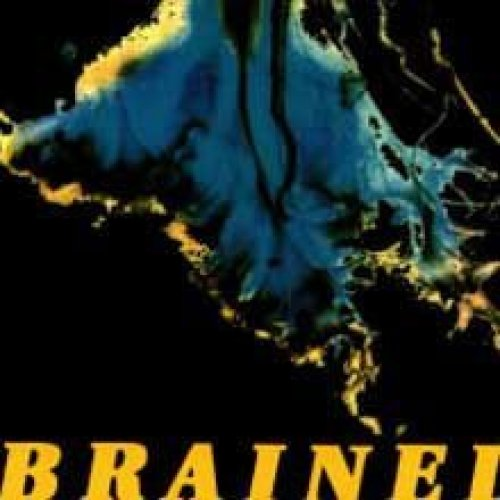Bild 1: Brained, Carrier (3 tracks, 1993, digi)