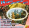 14 flotte Volksmusik-Hits Instrumental 2 (1990), Slavo Avsenik, Tiroler Nachtschwärmer, Wolfgang Lindner, Orig. Bregenzerwälder Dorfmusikanten, Obervellacher Buam..