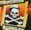 T.Raumschmiere, Blitzkrieg Pop (2005, #4749490)