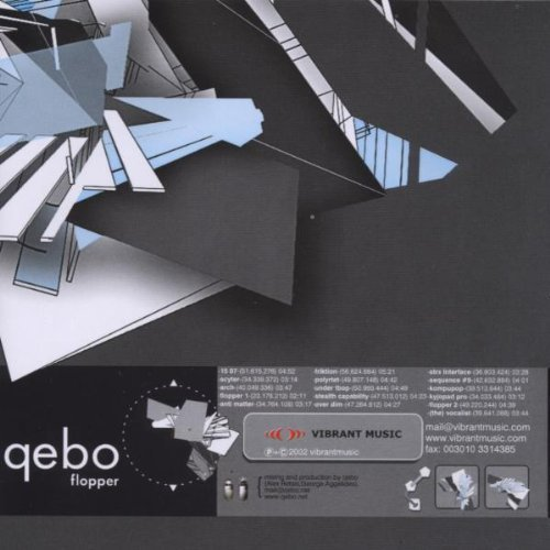 Bild 1: Qebo, Flopper (2003)