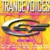 Trance Voices 10 (2004), Gigi D'Agostino, Novaspace, DJs @ Work, Scooter, Cascada, Armin van Buuren, Schiller mit Heppner, Ayu..