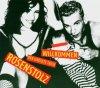 Rosenstolz, Willkommen (2004)