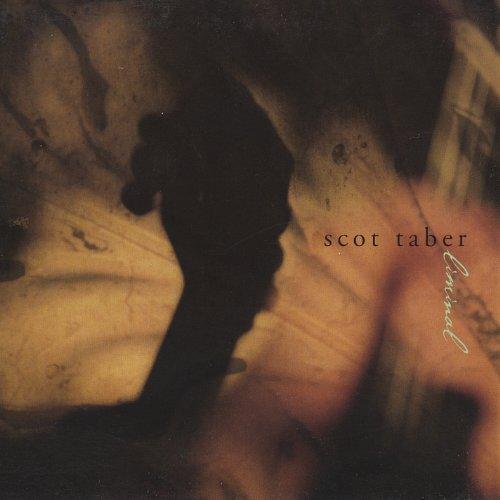 Bild 1: Scot Taber, Liminal (digi)