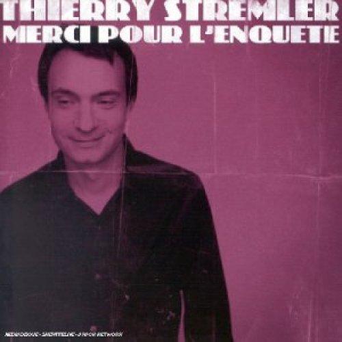 Bild 1: Thierry Stremler, Merci pour l'enquete (2003)