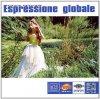Vibrazoni Productions, Espressione globale (1995, I)