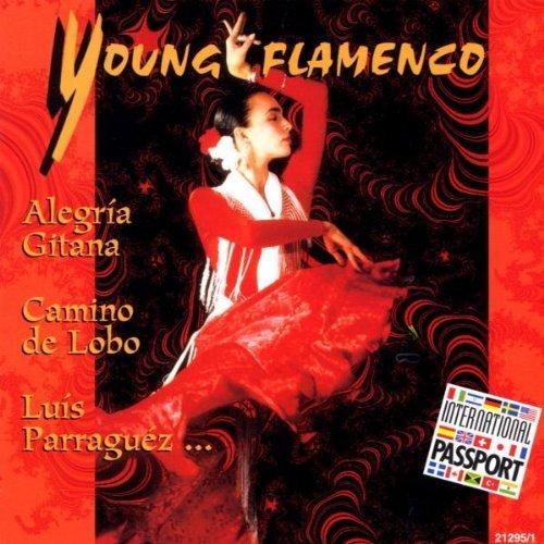 Bild 1: Young Flamenco (1999), Alegria Gitana, Jazz Meets Flamenco, Camino De Lobo..
