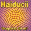 Haiducii, Dragostea din tei (2004; 5 versions)